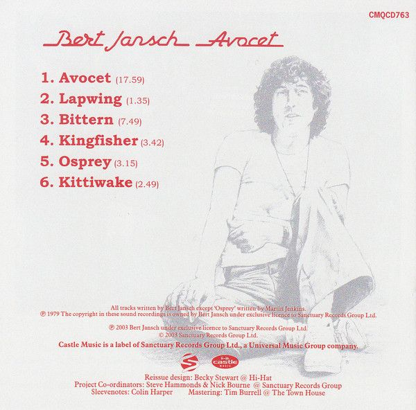 <em>Avocet</em> back cover